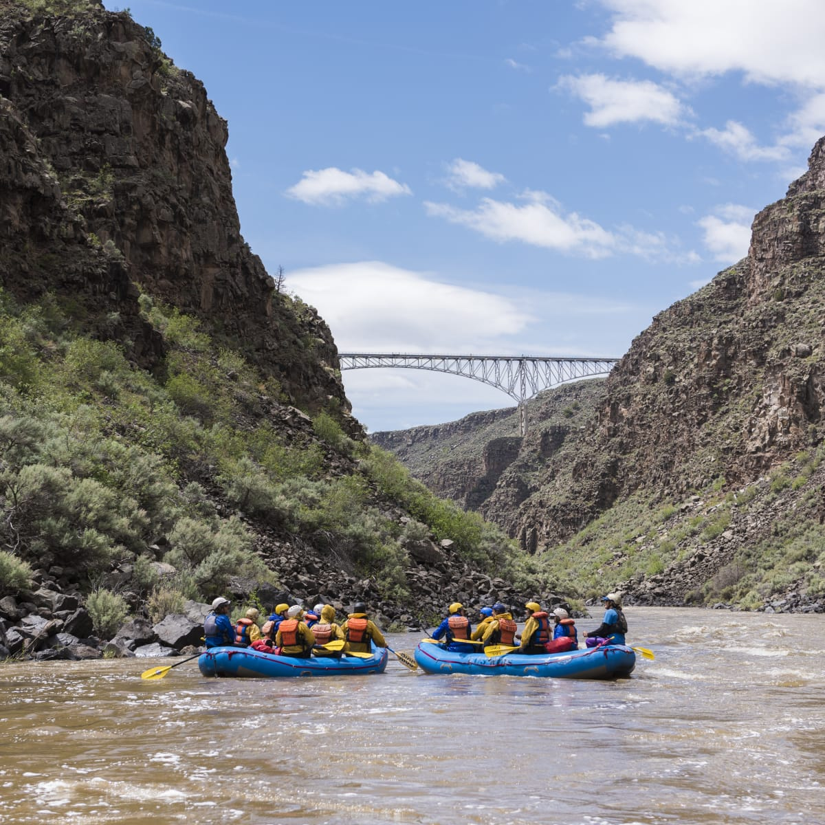 White water rafting in the Rio Grande