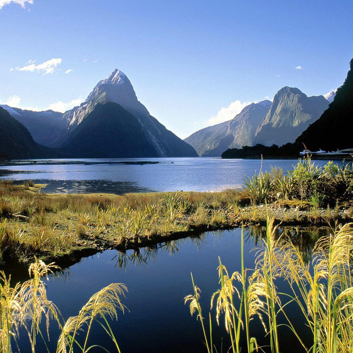 News_New Zealand_Milford Sound_Fjordland