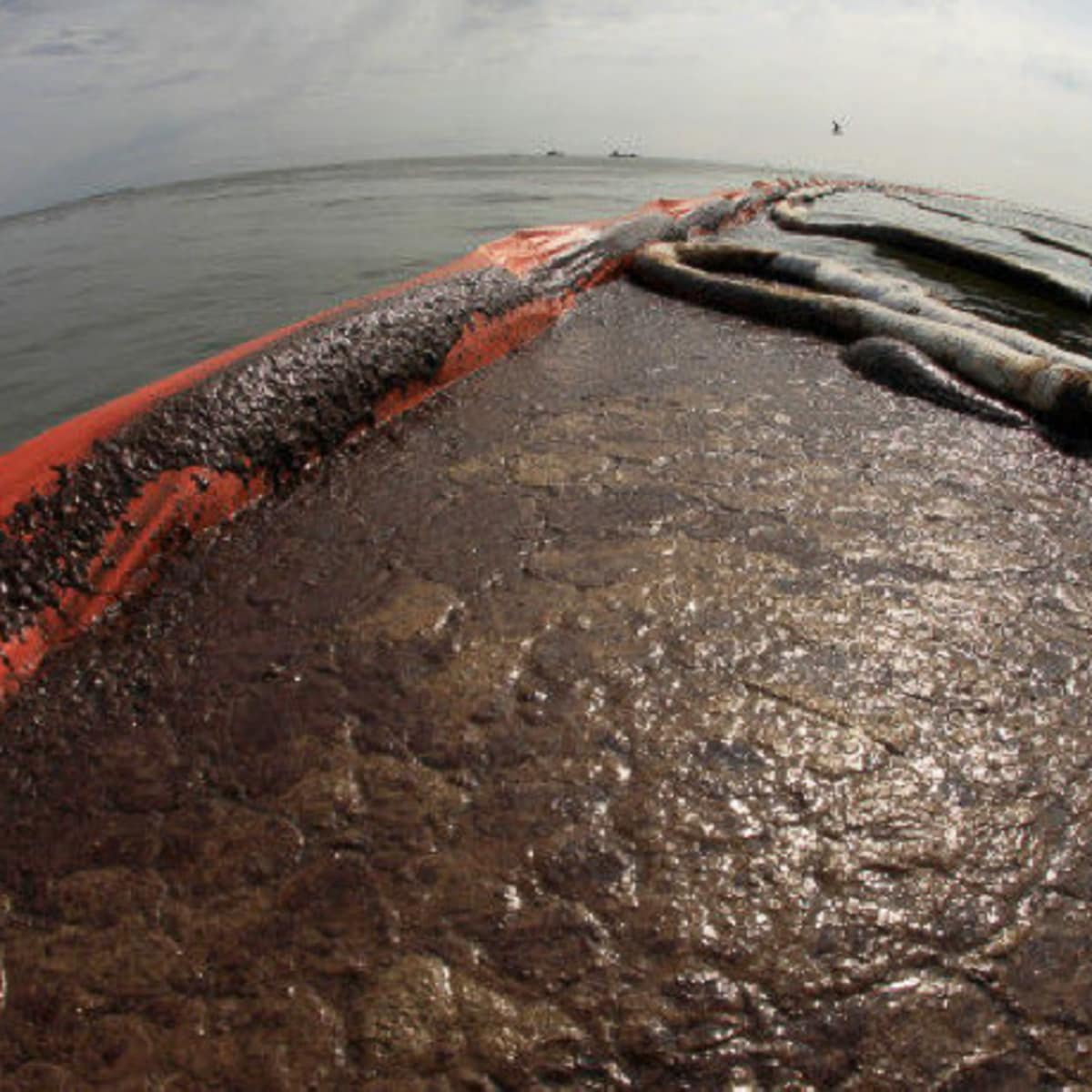 News_oil_oil spill_boom_BP