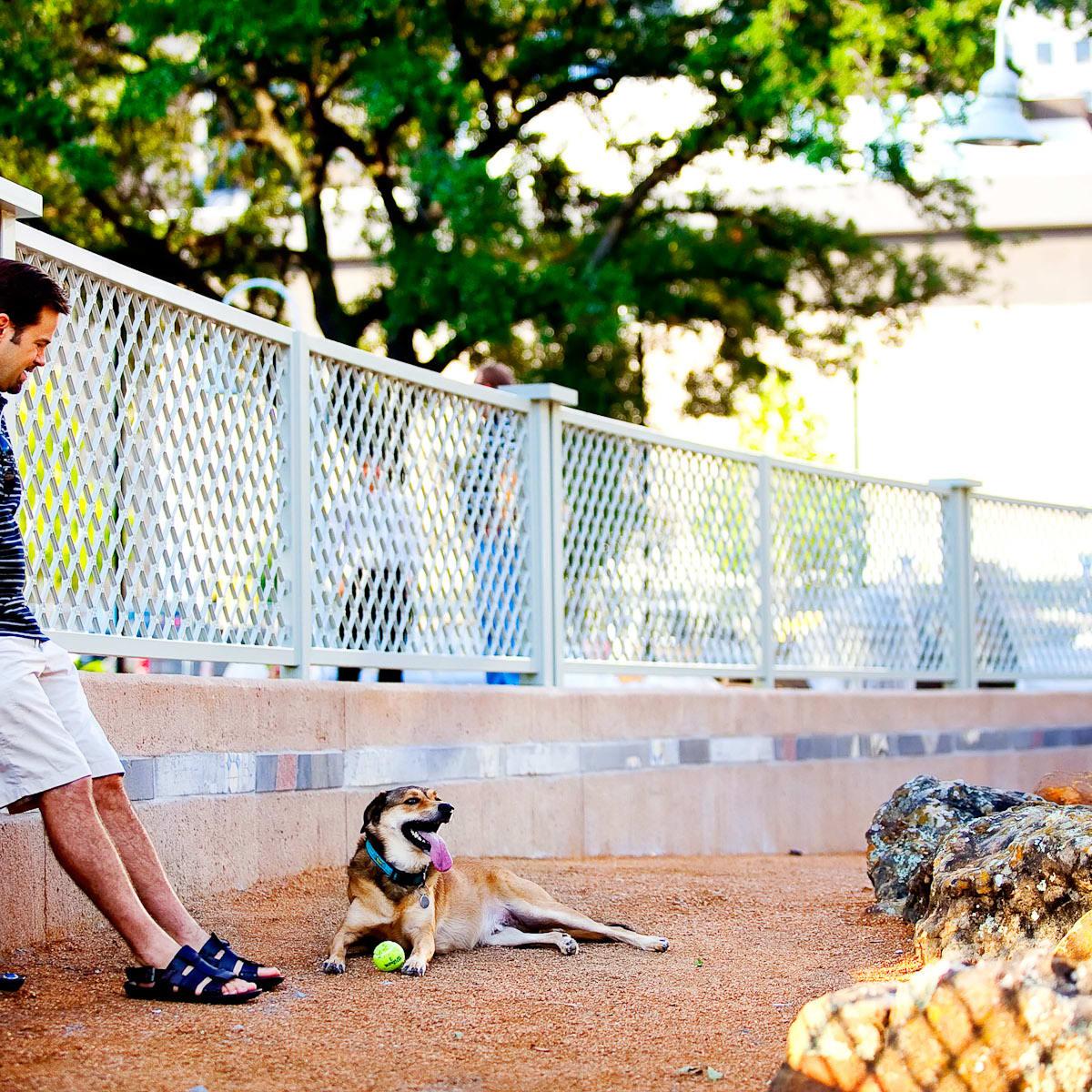 News_Market Square Park_dog run