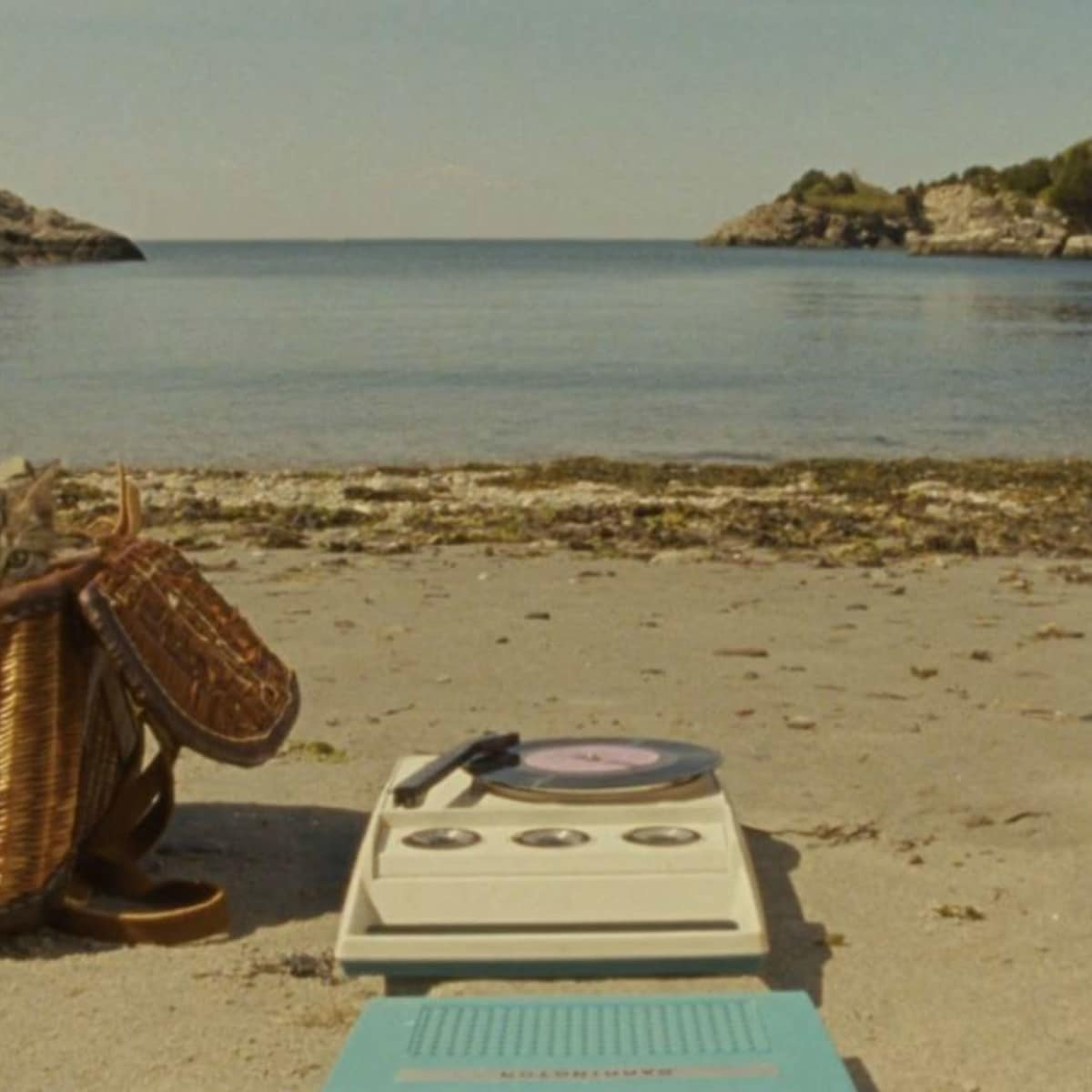 Endless Summer (Camp)