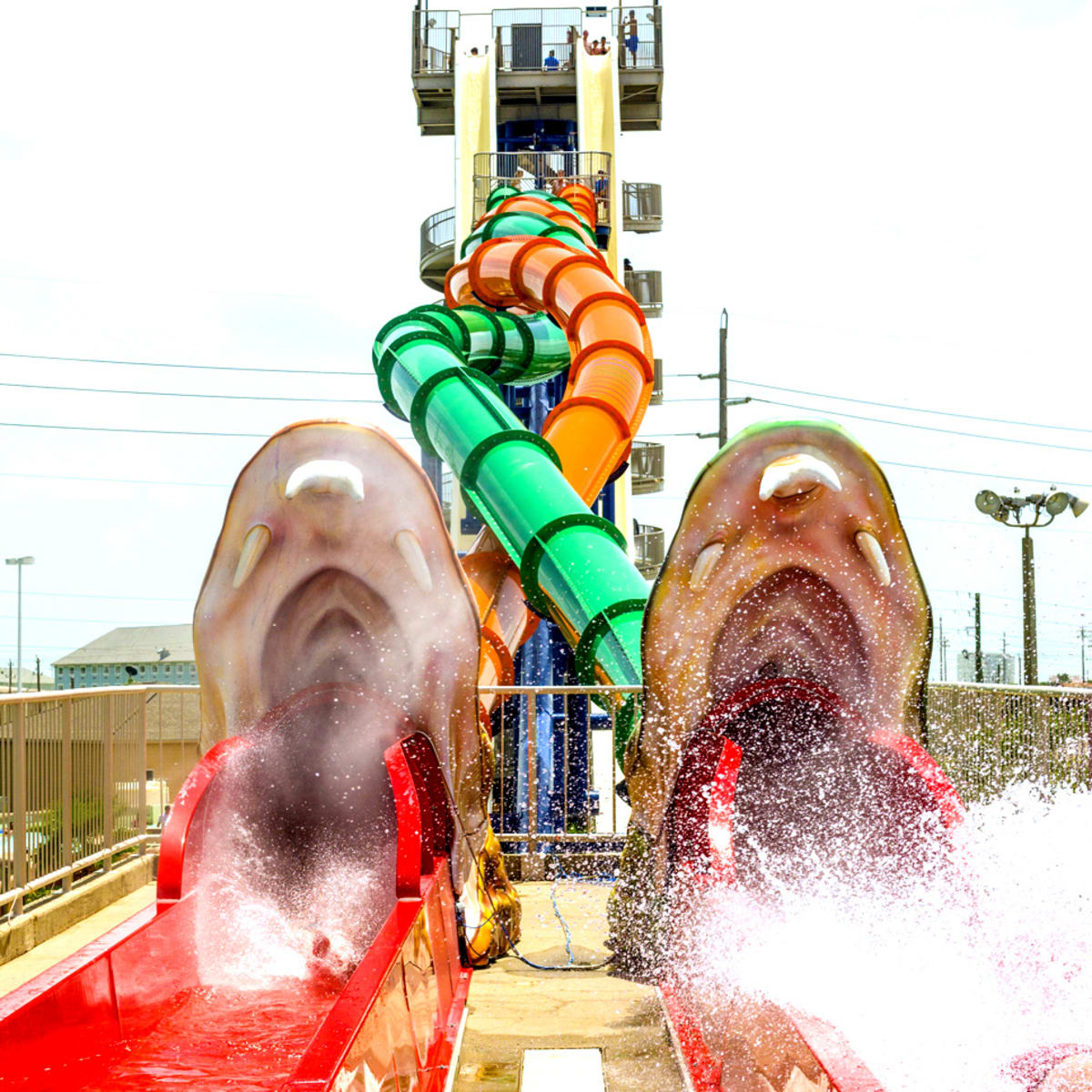 Screaming Serpents Schlitterbahn Galveston rendering