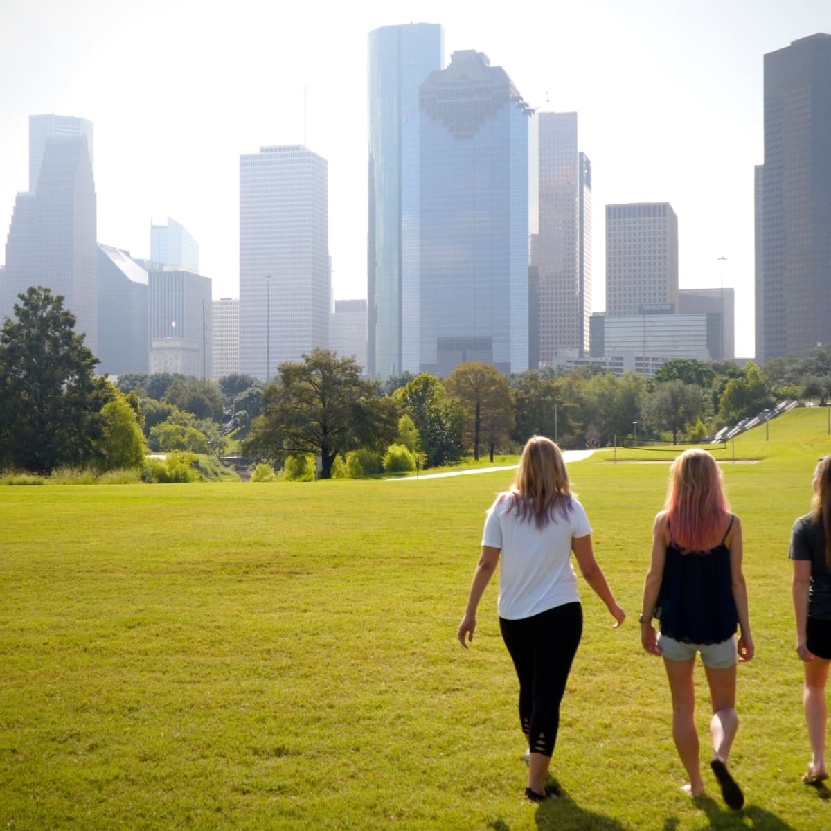 Buffalo Bayou Partnership Frost video