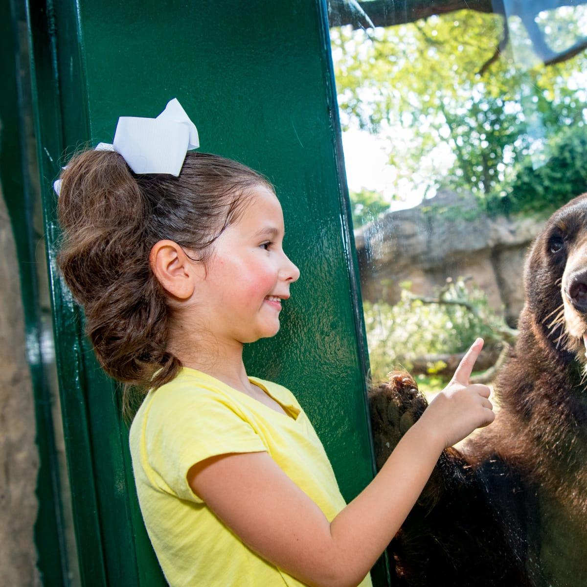 Little girl and black bear