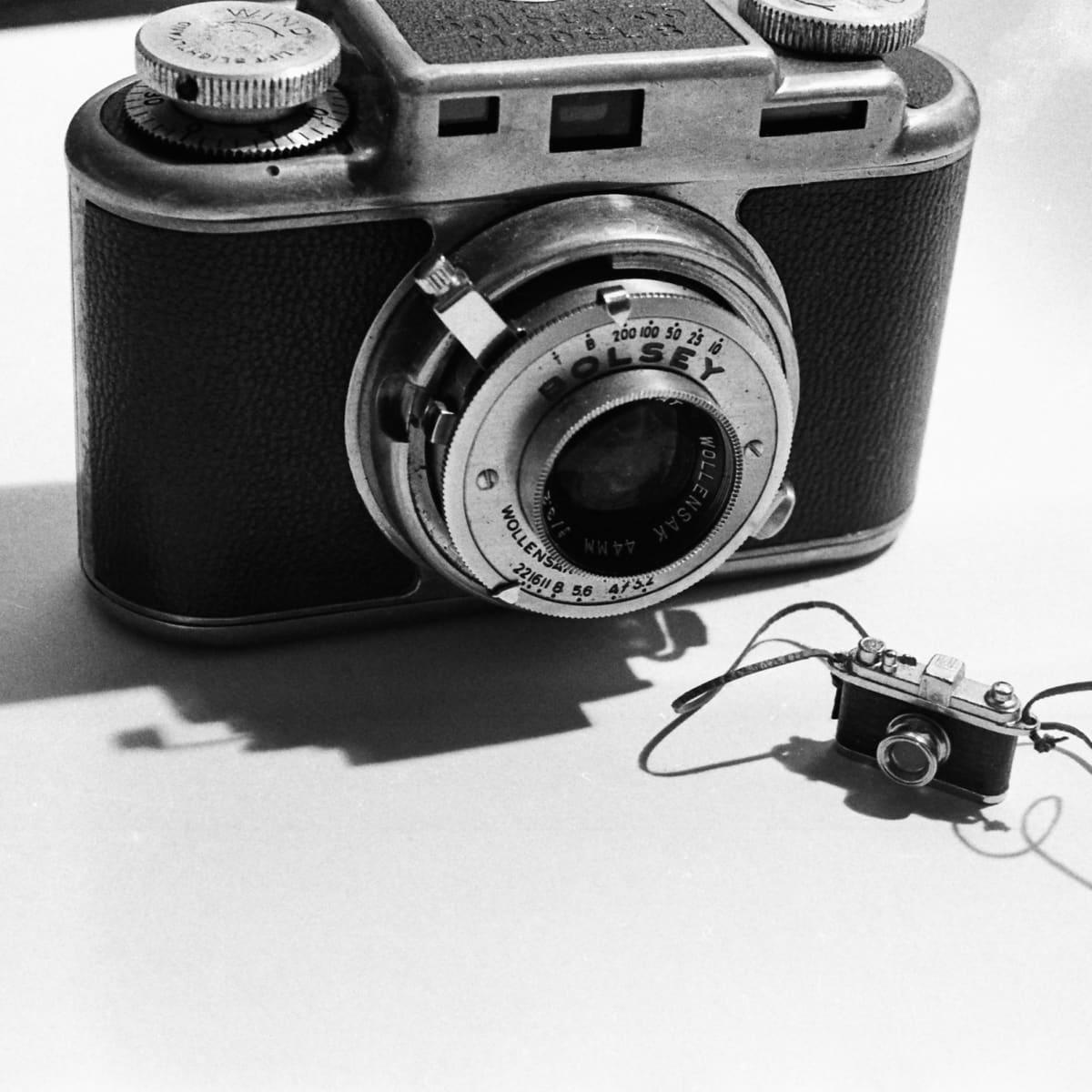 Big Camera/Little Camera