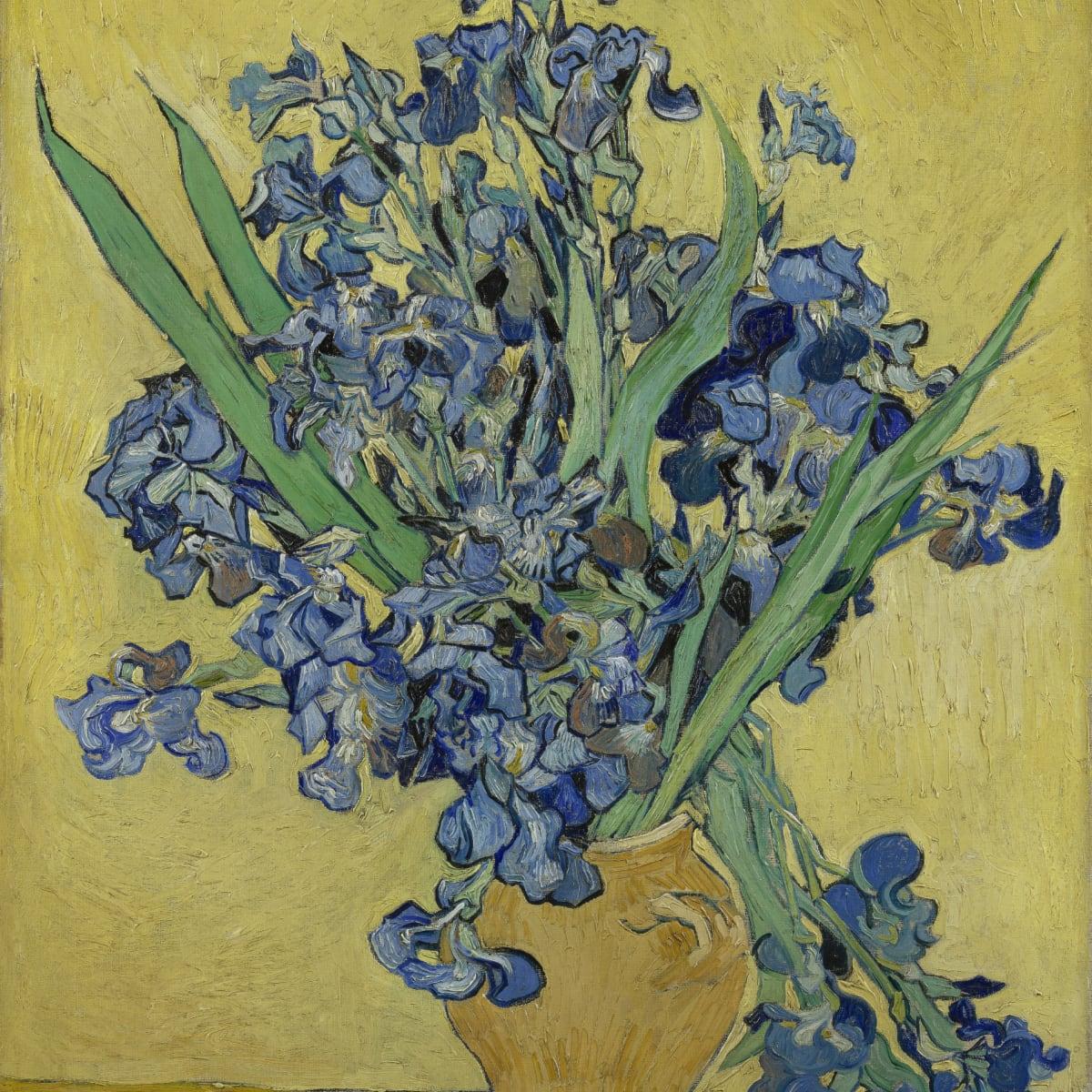 MFAH:Vincent van Gogh: His Life in Art, Irises