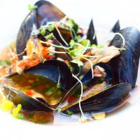 Justine's mussels appetizer