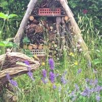 Houzz rustic garden 2