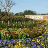 Sienna Plantation Community Farmers Market