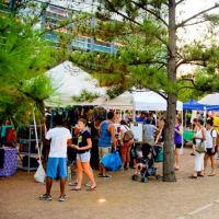 Nicole's Garden presents Houston HealthFest
