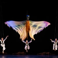 AT&T Performing Arts Center presents Momix: Opus Cactus