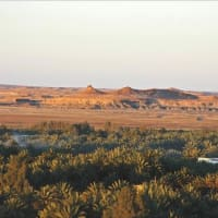 """Lecture: """"Forgotten in Time: Unknown Cultures of the Arabian Peninsula"""""""