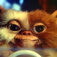 Gizmo from movie Gremlins