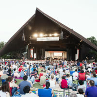 Houston Symphony presents Summer Symphony Nights