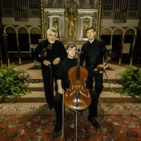 Chamber Music Society of Fort Worth presents Diaz Trio
