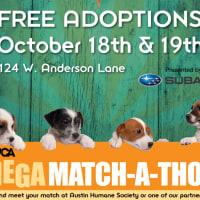 Mega Match-a-thon Adoption Event ASPCA 2014