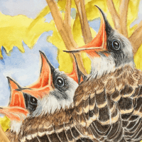 Art.Science.Gallery. presents August Artist Pop-Up featuring Pat Falconer