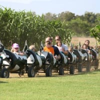 Barton Hill Farms presents The Fall Festival & Corn Maze