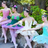 Collin County Ballet Theatre