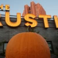 Picturesque Pumpkin Patch Party