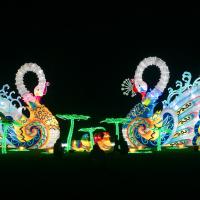 Holiday Wonderland at Fair Park