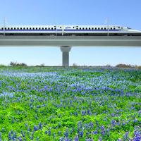 Houston high speed train rendering bluebonnets