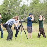 Greater Austin EcoBlitz