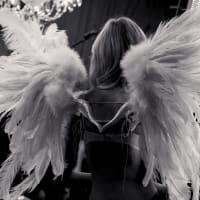 News_Victoria's Secret_angels_wings