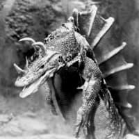 News_lizard_dragon