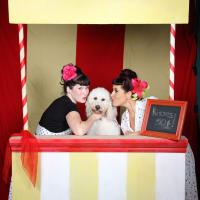 Austin Pet Expo
