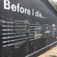 Before I Die mural austin