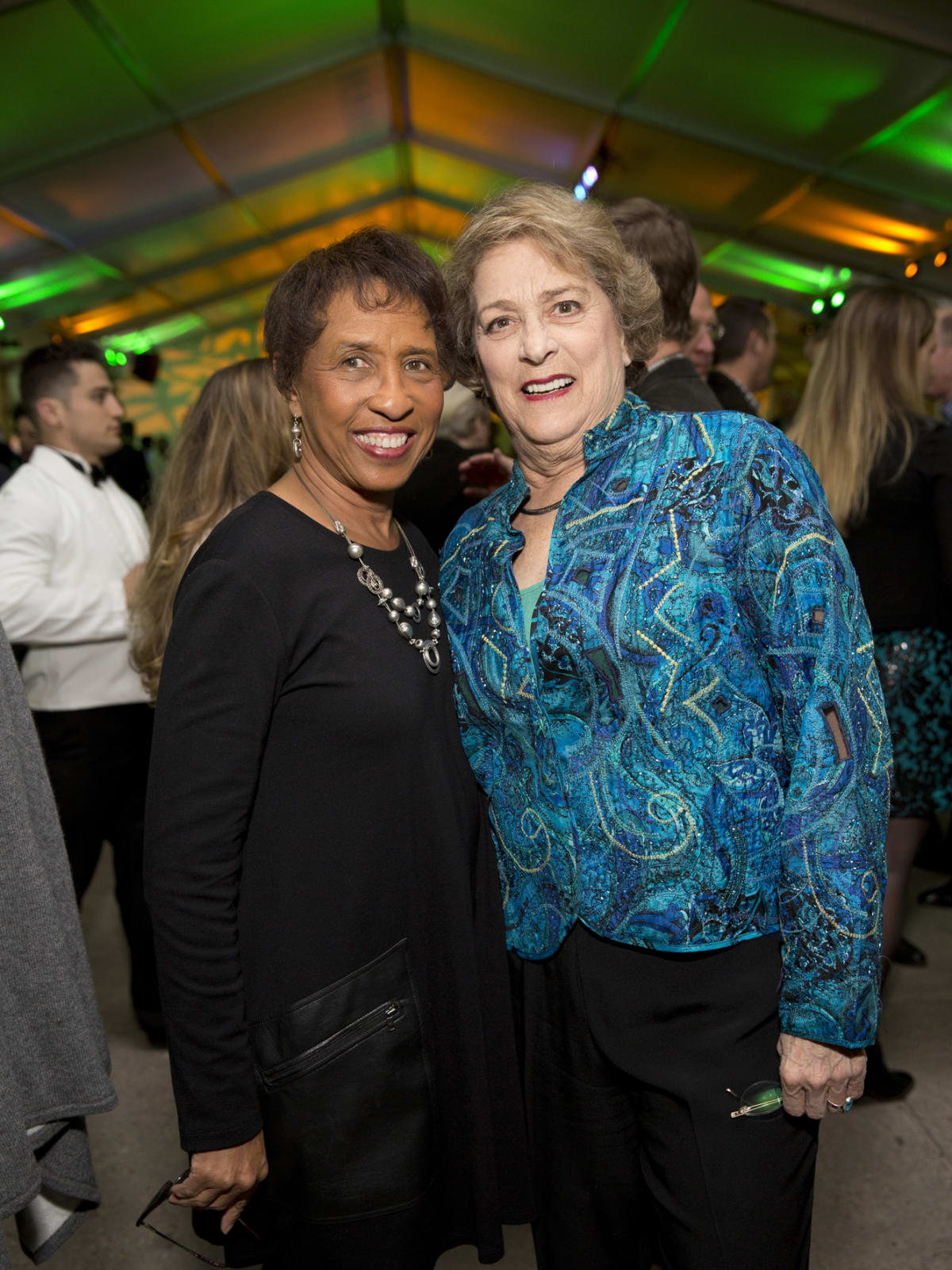 Memorial Park Conservacy Gala, Feb. 2016, Sharon Owens, Ellen Cohen