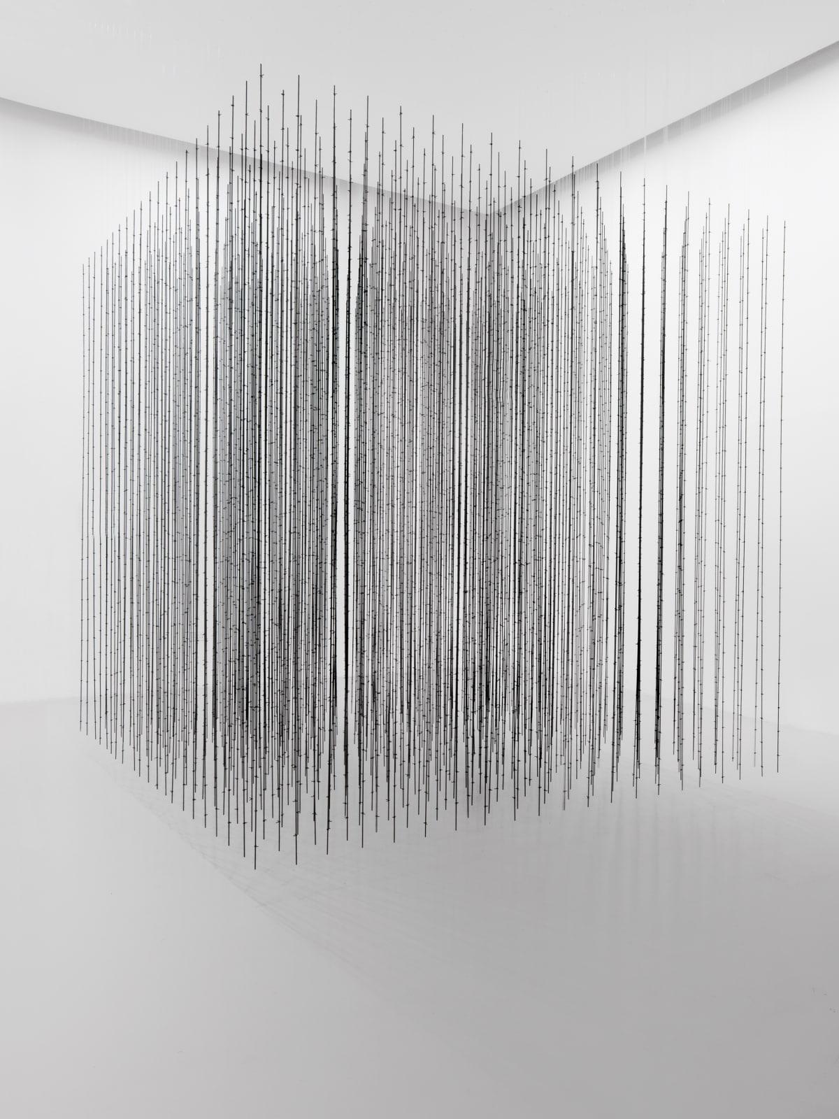 Mona Hatoum: Terra Infirma, Impenetrable, 2009