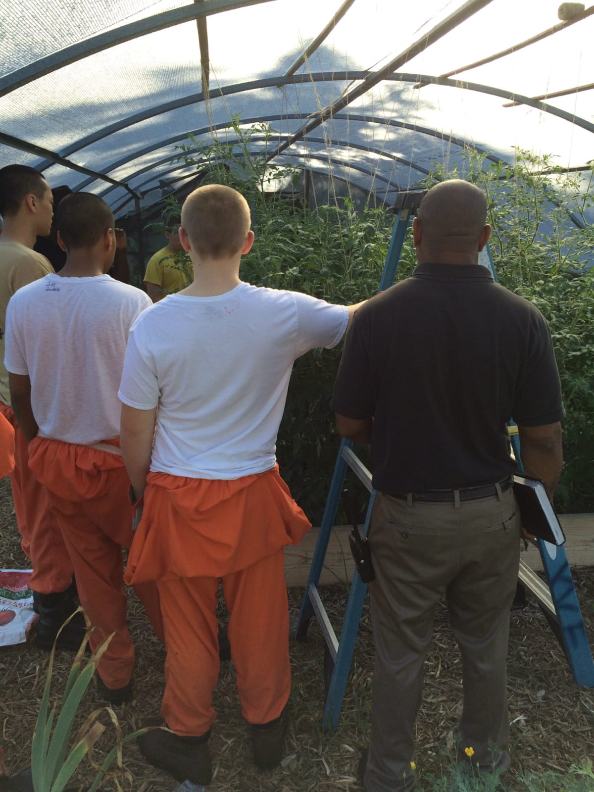 Young men in the Horticulture Therapy program manage the gardens at Youth Village