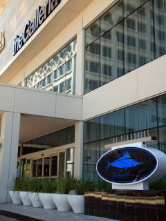 The Oceanaire Seafood Room - CultureMap Houston