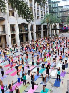 Revolution Studio presents Yoga on the Avenue