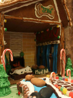 The Westin at The Woodlands presents Gingerbread Doghouse Contest and Auction Cocktail Fundraiser