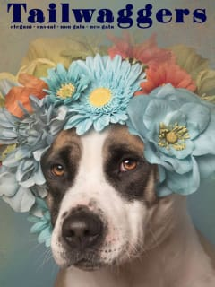 Austin Pets Alive presents Tailwaggers