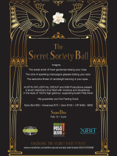 poster for the Secret Society Ball 2014 benefiting Austin Pets Alive