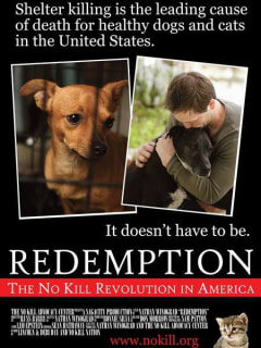 poster for Redemption: No Kill Revolution in America documentary