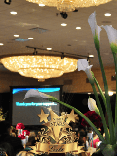 """Night with the Stars Gala 2015"" benefiting The Latino Learning Center"