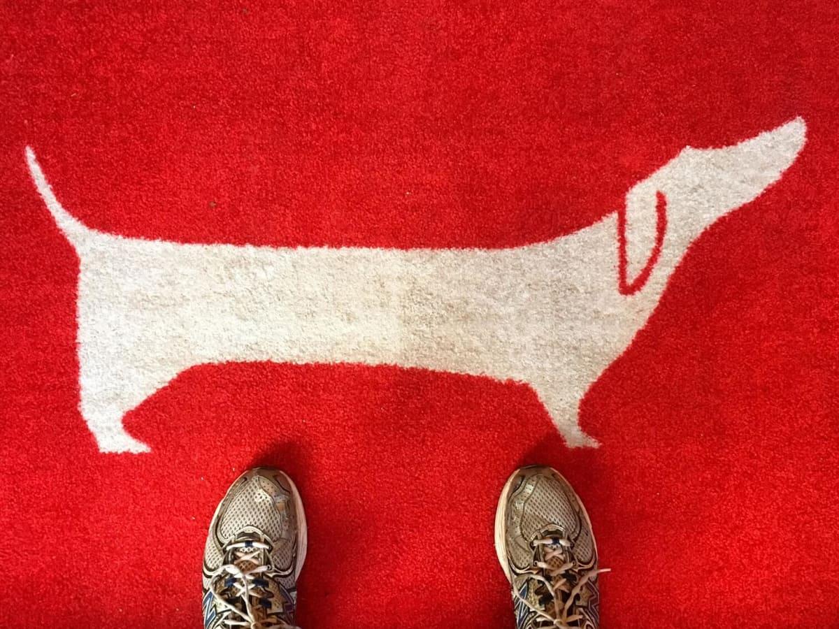 Good Dog welcome mat