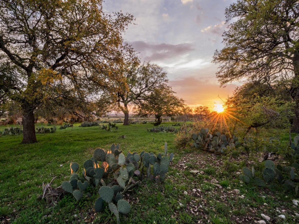 Orchard Ridge housing development Liberty Hill country sunset