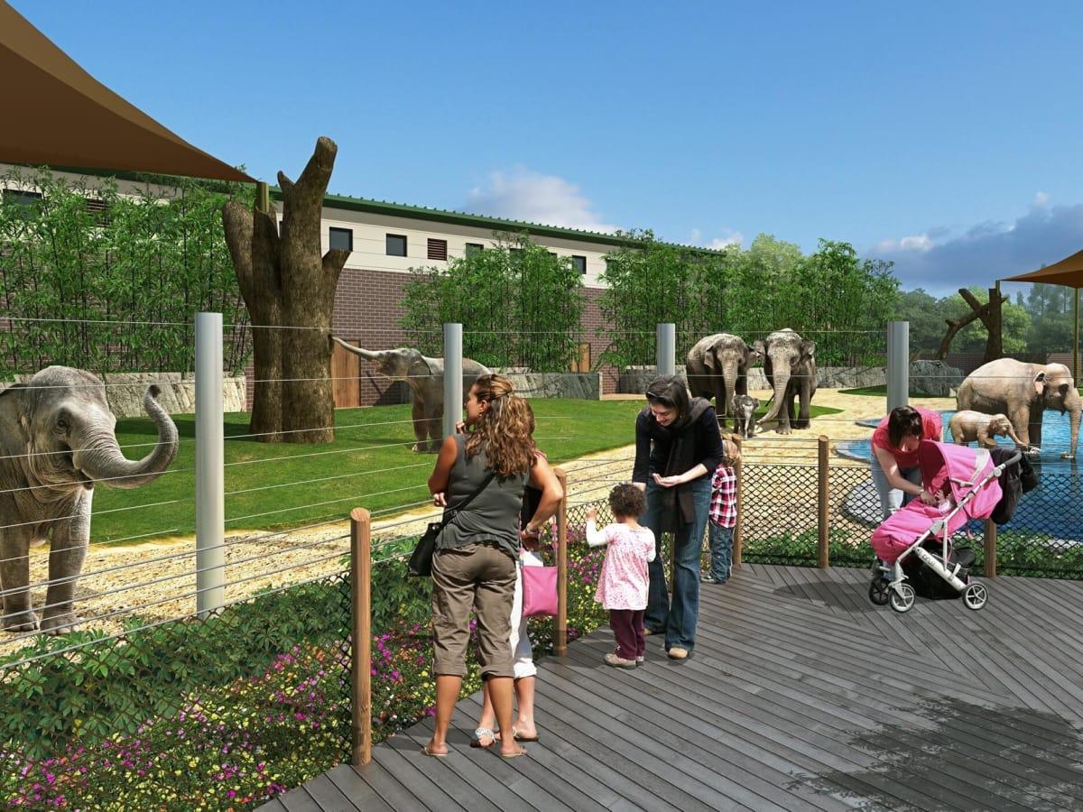Houston Zoo Elephant expansion rendering