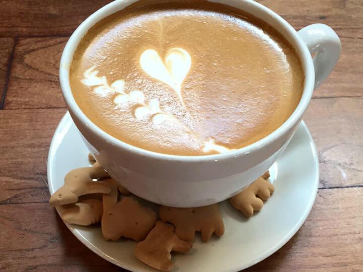Halcyon San Antonio Southtown coffee latte art cappuccino