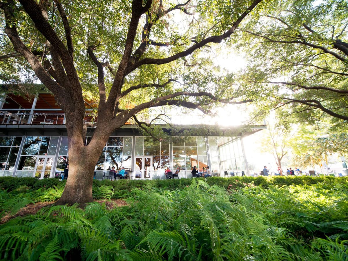 The Grove Houston patio November 2014