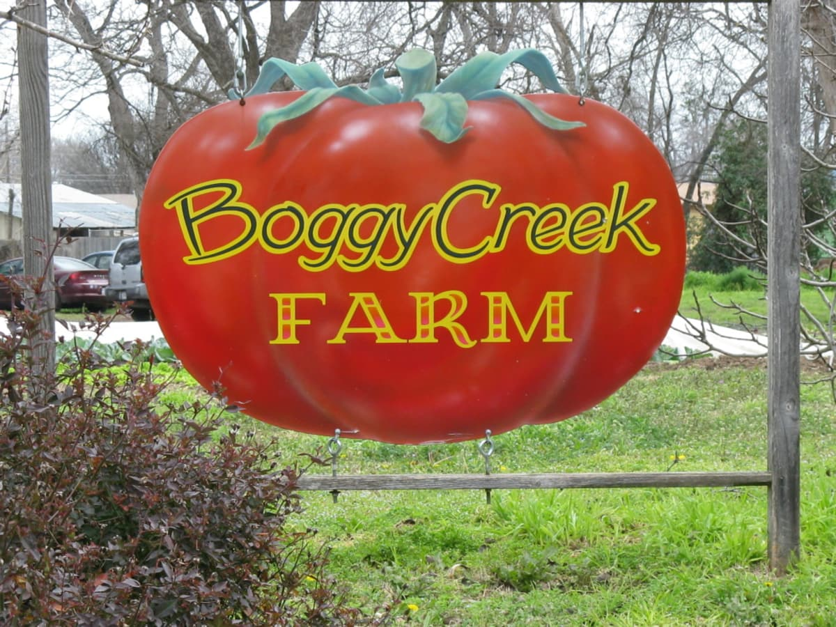 Austin Photo: Places_Food_Boggy Creek Farm