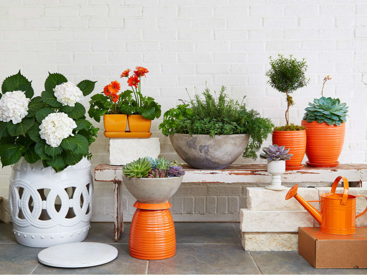 Container collection from Gardenuity