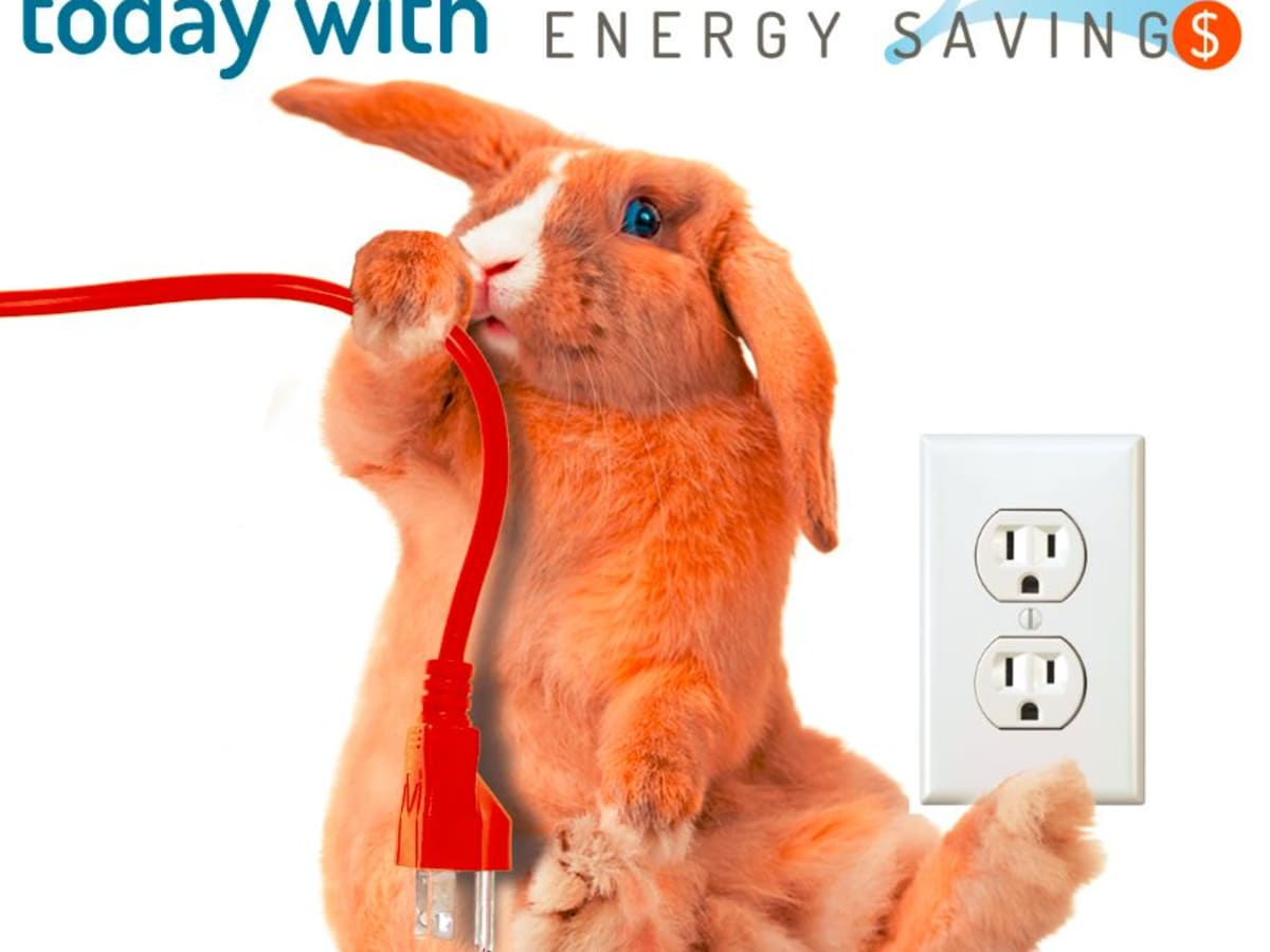 Bounce Back energy savings