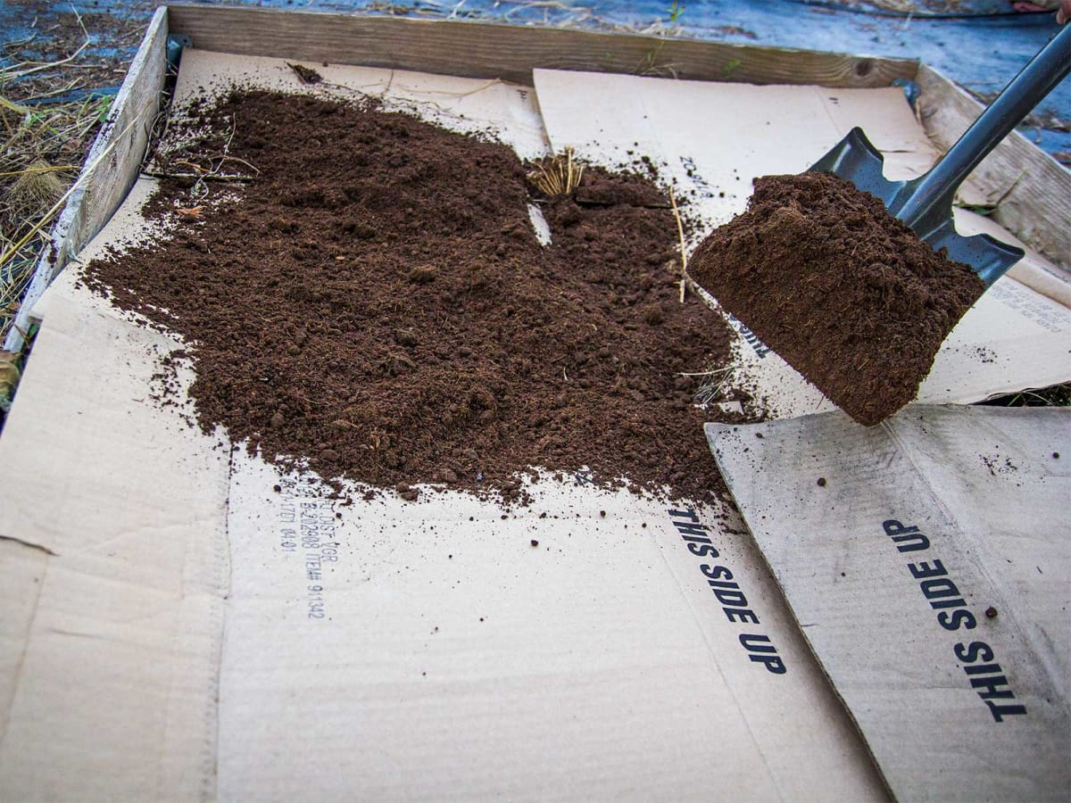 Photo of raised garden bed covered by cardboard and compost